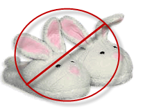Judi Speak about Networking on Blog Radio show for Job Seekers Bunny Slippers ar